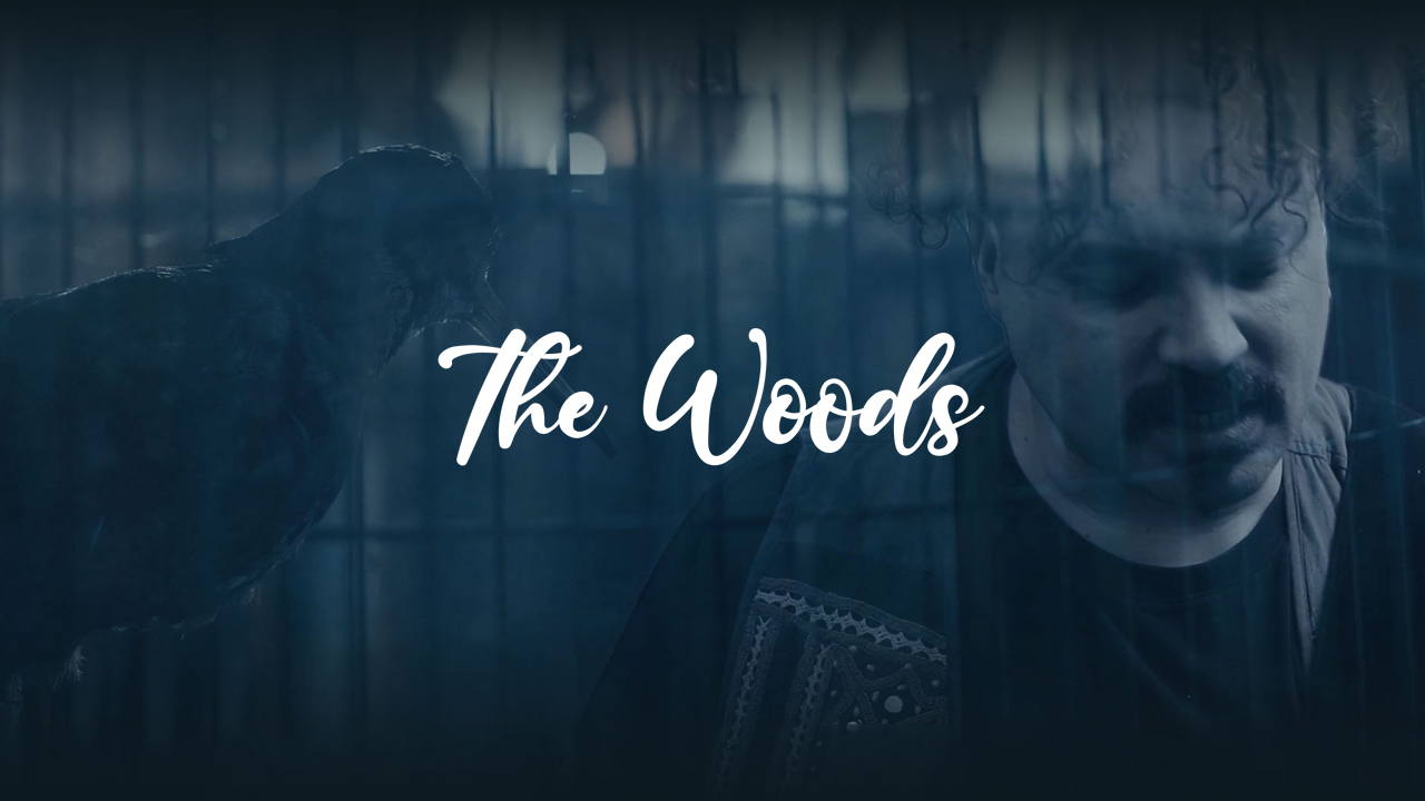 The Woods – Senseless