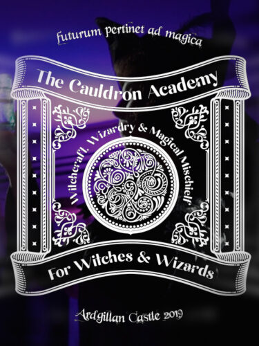 The Cauldron Academy at Ardgillian Castle